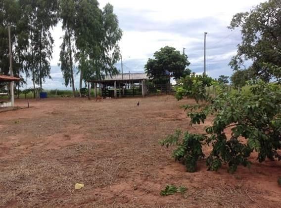Fazenda Rural, Alto Garça- Mato Grosso - 198
