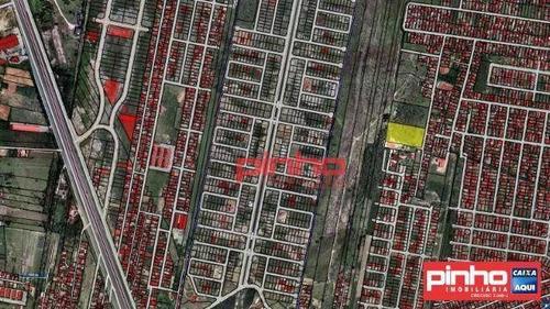 Imagem 1 de 7 de Terreno À Venda, Área Total De 10.721,70m² Por R$ 1.155.000,00 - Barra Do Aririú - Palhoça/sc - Te0011