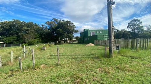 Terreno Para Venda Em Garopaba, Campo Duna - 986_2-1163957