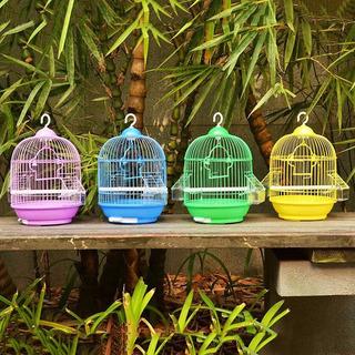Jaula Redonda Pajaros , Aves,loros Colores,