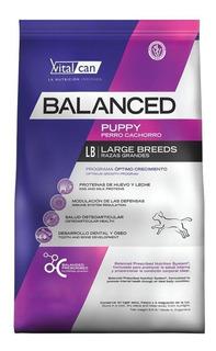 Alimento Vitalcan Balanced perro cachorro raza grande mix 20kg