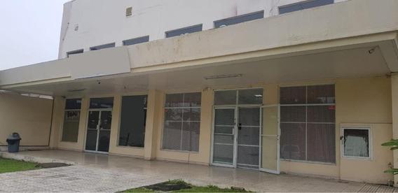 Altos De Panama Remodelado Local Comercial En Alquiler Panam