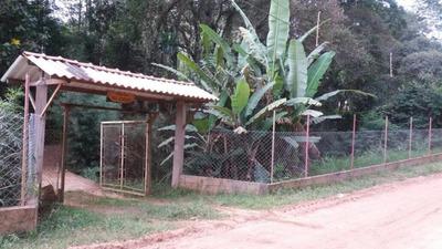 Chácara Com 1 Dormitório À Venda, 3150 M² - Jardim São João - Guarulhos/sp - Ch0077