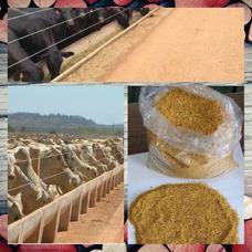 Ddg Farelo De Milho Ração 32 A 34 % De Proteina