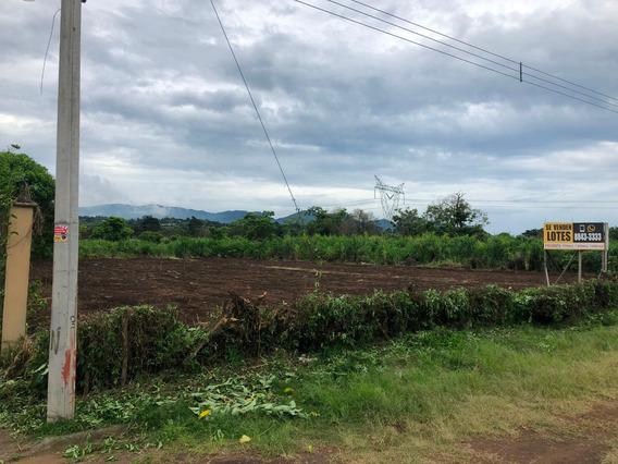 Terreno Para Proyecto/condominio (7986m2), San Pablo Heredia
