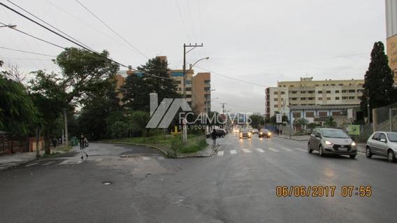 Rua Tapajos, Vila Cachoeirinha, Cachoeirinha - 257188