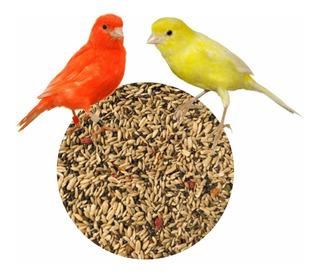Alimento Mezcla Especial Para Canarios Con Vitaminas 3kg