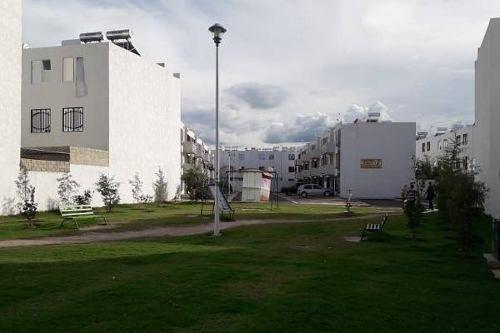 Departamento En Renta Calle Filita, Real Tesistan