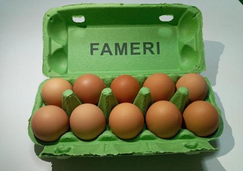Imagen 1 de 3 de Estuche Porta Huevos Biodegradable -10 Unidades-
