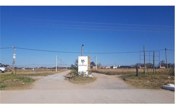 Venta + Terreno + 537 M2 + Loteo Los Nogales
