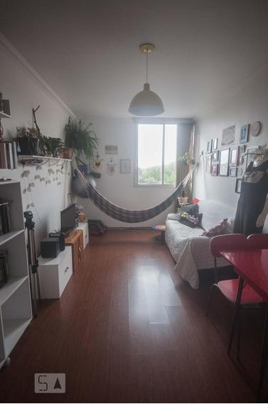 Apartamento Para Aluguel - Água Branca, 2 Quartos, 75 - 893096234