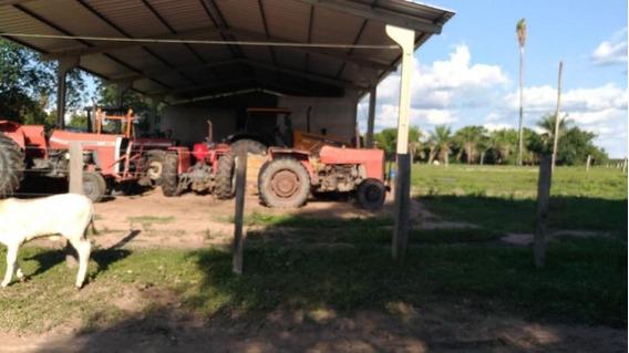 Fazenda Para Venda Em Aquidauana, Centro - 1033