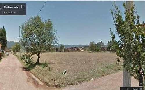 Terreno En Venta En Puebla, Chignahuapan Tenxtla Oportunidad