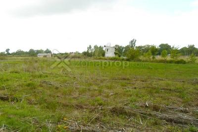 Campo En 643 E/ 3 Y 4