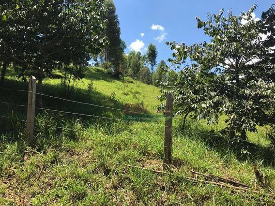 Terreno À Venda, 4092 M² Por R$ 160.000 - Centro - Gonçalves/mg - Te0778