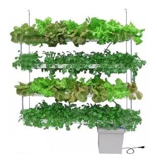 Hidroponia Cultivo Hidroponico Vertical Set Kit 4 Niveles