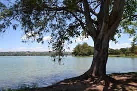 Lote A Venda Em Lagoa Santa No Bairro Recanto Da Lagoa - 3613