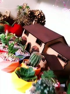 Promo!!! Maceta Mini Impresión 3d (con Plantitas)