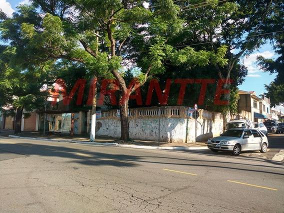 Terreno Em Vila Guilherme - São Paulo, Sp - 314958