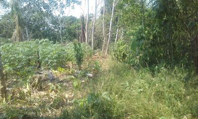 Terreno Finca Amazonica En Loreto De 3.7391 Ha