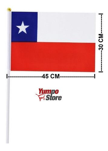 Imagen 1 de 1 de Pack 12 Banderas De Chile Chilena De Mano 45 X 30 Cm