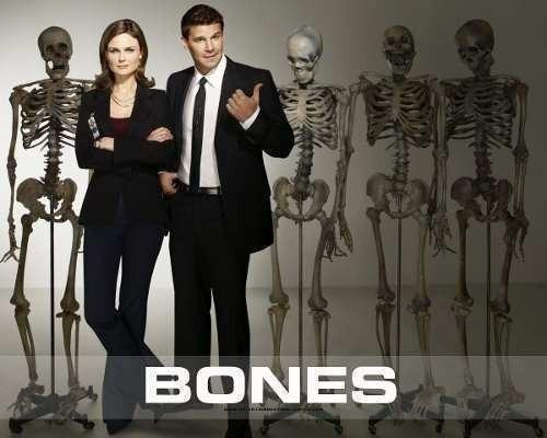 Imagem 1 de 1 de Bones (1ª A 12ª Temporada) Dublado + Frete Grátis