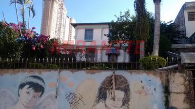 Terreno Em Santana - São Paulo, Sp - 321923