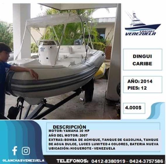 Dingui Caribe 12 Lv233