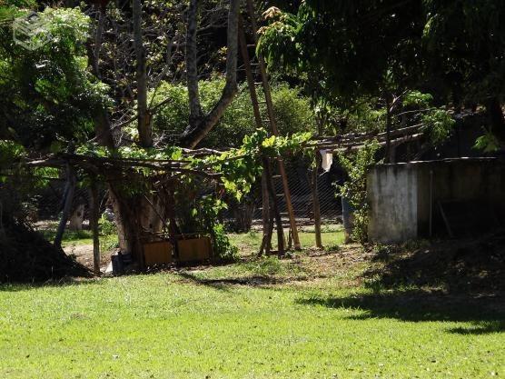 Fazenda Para Comprar No Vereda Em Ribeirão Das Neves/mg - 1501