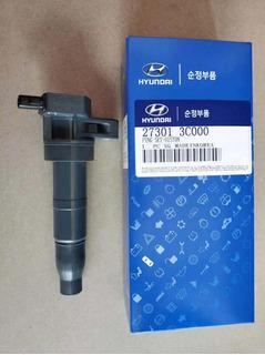 Coil De Ignición Hyundai N20 Original