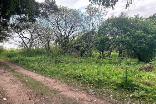 Imagen 1 de 15 de Hectareas Venta En Villa Elisa, Ideal Ley Habitat