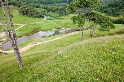 Fazenda Em São Pedro De Alcântara - Codigo: Fa0004 - Fa0004