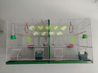 Jaula Criadora Para Criar Canarios Y Accesorios Voladora #2