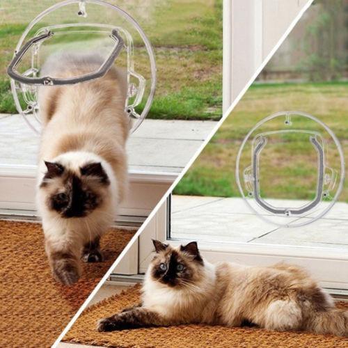 Ronda De Puerta Para Mascotas Gatos Perros Pequeños + Cierre