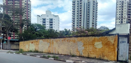 Imagem 1 de 9 de Terreno À Venda, Jardim Avelino, Com 551m² De Área , Plano, Pronto Para Construir, Esquina - Sp - Te0206_prst