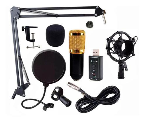 Imagen 1 de 1 de Micrófono Audiotek BM800 condensador omnidireccional negro
