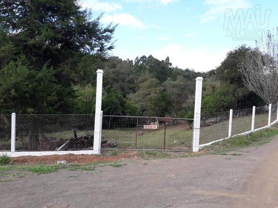 Sítio Para Venda Em Taquara, Fazenda Fialho, 2 Dormitórios, 1 Banheiro, 1 Vaga - Gvs0016_2-1033379