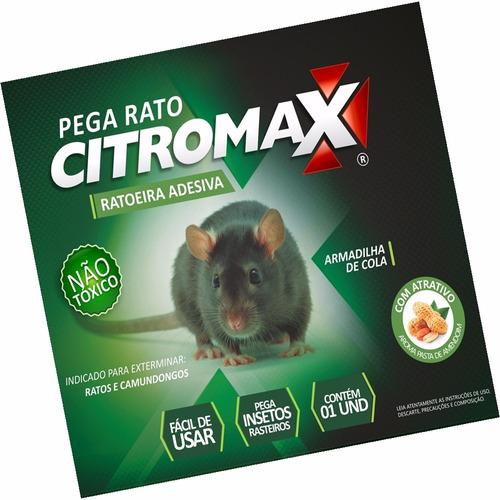 16 Ratoeiras Cola Rato E Camundongos