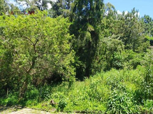 Imagem 1 de 6 de Terreno À Venda, 9500 M² Por R$ 2.300.000,00 - Vila Nova - Porto Belo/sc - Te0083