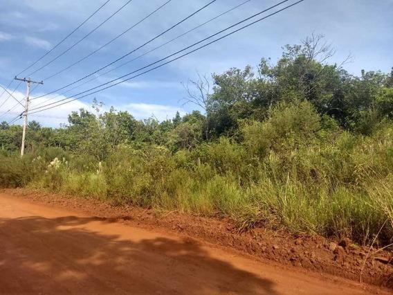 Venda De Rural / Chácara Na Cidade De Araraquara 9490