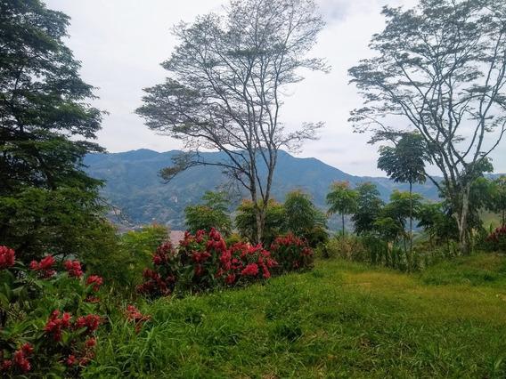 Lote En Barbosa En Bosque Clima Genial A 50 Mins De Medellín