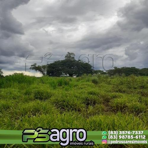 Imagem 1 de 16 de ( Fazenda Em Promoção )fazenda À Venda, 26000 Hectares Por R$ 6.200.000 - Centro - Bonito De Minas/mg - Fa0072
