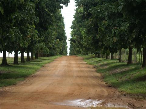 Fazenda Rural Bairro Inválido, Cidade Inexistente - Fa0080. - Fa0080