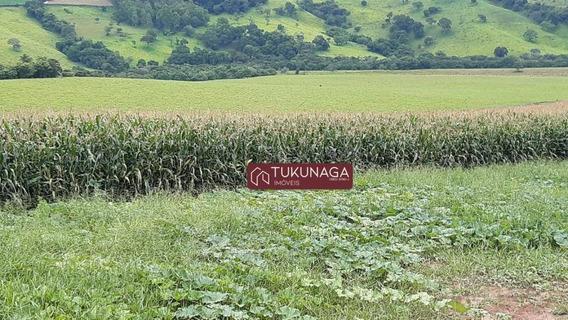 Fazenda À Venda Região Pouso Alegre- Mg, 2904000 M² Por R$ 5.500.000 - Fa0003