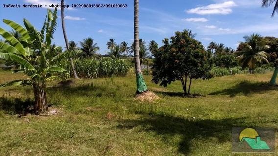 Ilha Para Venda Em Piaçabuçu, Zona Rural - Fz-05
