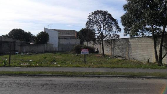 Terreno Para Venda Em São José Dos Pinhais, Rio Pequeno - 372011000_2-588062