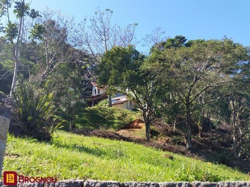 Imagem 1 de 15 de Casa Residencial - Sambaqui - Ref: 32270 - V-c6-32270
