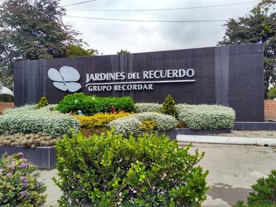 Parcela Doble Se Vende Con Servicios Funerarios Incluidos