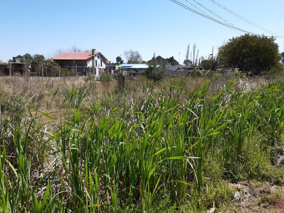 Terreno En El Pinar Próximo A Ruta Interbalnearia
