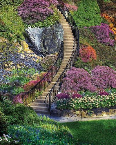 Imagen 1 de 2 de Juego  Puzzle De 500 Piezas Para Jardín-springbok's